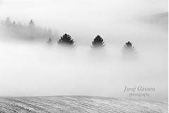 Fotografie - Fotografia - Zimná krajina II - 1687201