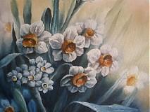 Obrazy - Narcisy - 1784181