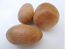 Nezaradené - Buk (Fagus) - 1827389