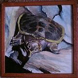 Kresby - Apalone ferox - 1955692
