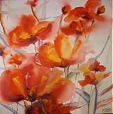 Obrazy - Wild poppies III. - 1978458
