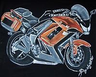 - Kawasaki Z1000SX orange na objednávku - 2003791