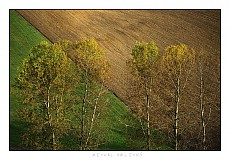 Fotografie - Jesenné štruktúry - 2021048