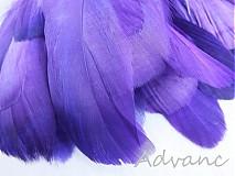 Suroviny - Kačacie fialové R8 - 2163167