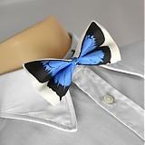 - Motýlek - modrý - 2172179