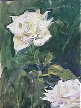 Obrazy - Reprodukcia - Biele ruže - 2282183