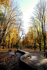 Fotografie - Jeseň - 232260