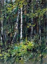 Obrazy - V lese - 2344981