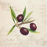 Papier - Olives cream - Olivy - 2375294
