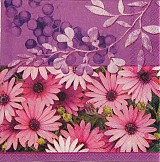 Papier - Aster Purple - Astra - 2385173