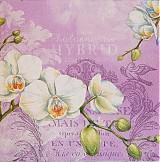 Papier - White Orchids lila - 2385176