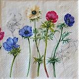 Papier - Windflowers cream - 2400853