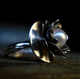 Prstene - Nymphaea - 242543