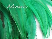 Suroviny - Kohútie jednofarebné zelené tmavé R2 - 2431537