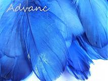 Suroviny - Kačacie modrá tmavá R5 - 2431590