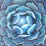 Obrazy - Modrá ruža - 2440356