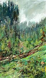 Obrazy - V lese - 2458824