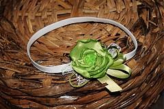 - Jablkovo zelená - 2601573
