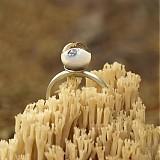 Prstene - kyklopove oko - 2682612