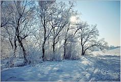 Fotografie - Zima ,až za nechty zachádzala - 2768240