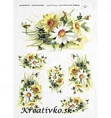 - Ryžový papier - R 0258  Žlté a biele margaréty - 2785010