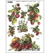 - Ryžový papier - R 0394  Jahody a jablká - 2787106