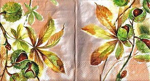 Papier - Servítok gaštany - 2927681
