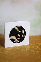 Papiernictvo - Zlaté steblá - 2966070