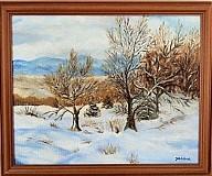 Obrazy - Zimná príroda - 3098554