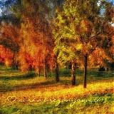 Obrazy - ČAS PRE FARBY  fotoplátno 60x60 cm - 3190471