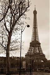 Fotografie - Eiffel Tower - 320402