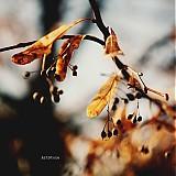 Fotografie - Fly I. - 3216674
