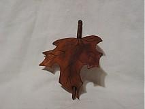 Ozdoby do vlasov - Listová spona javorová - 3269709