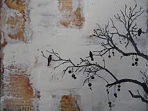 Obrazy - Vtáci v ľadovej zime..I - 3347432