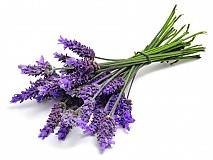 Suroviny - Levanduľová silica (vôňa 10 ml)  - 3372506