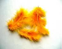 Suroviny - marabu sýtožlté - 3384277