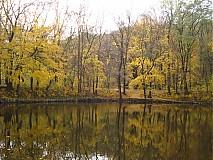 Fotografie - žltá železná studnička - 3515041