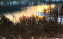 Obrazy - SÚMRAK fotoplátno 70x50 cm - 3525191