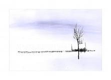 Fotografie - Už je tu,zima je tu II. - 3583328