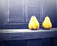 Fotografie - hrušková žlutá - 3585719