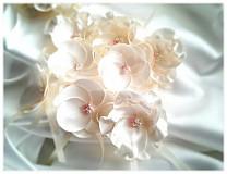 Pierka - Svadobné pierka -krém s jahodami - 3688419