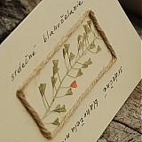 Papiernictvo - srdečné blahoželanie 01 - 3716537