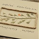 Papiernictvo - srdečné blahoželanie 01 - 3716574