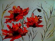 Obrazy - akvarel Maky celkom zdivené - 3727417