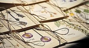 Papiernictvo - KVITNÚCA LÚKA II - svadobné oznámenia - 533941