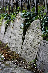 Fotografie - Židovské náhrobky - 543408