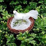 - Hniezdočko s holúbkom na obrúčky - 544906