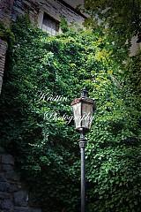 Fotografie - Svetlo v tme... - 676078