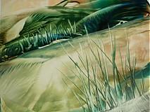 Obrazy - krajinné variácie... - 679697