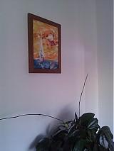 Obrazy - Slnko - 794517